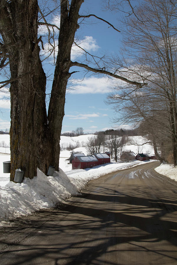 Take a Ride down to the Jenne Farm by Jeff Folger