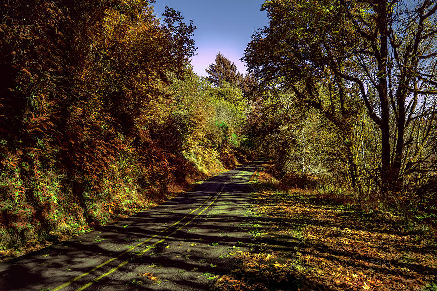 Take the Road by Bill Posner