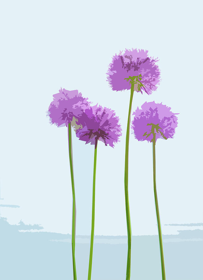 Tall Alliums by Garden Gate magazine