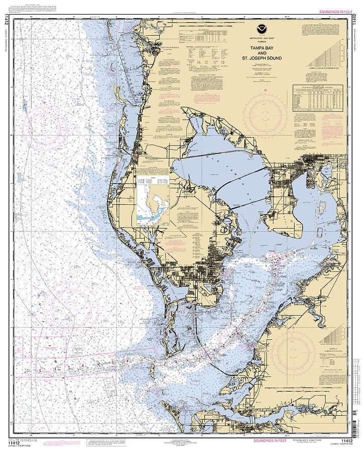 Tampa Bay and St. Joseph Sound NOAA Chart 11412 by Paul and Janice Russell