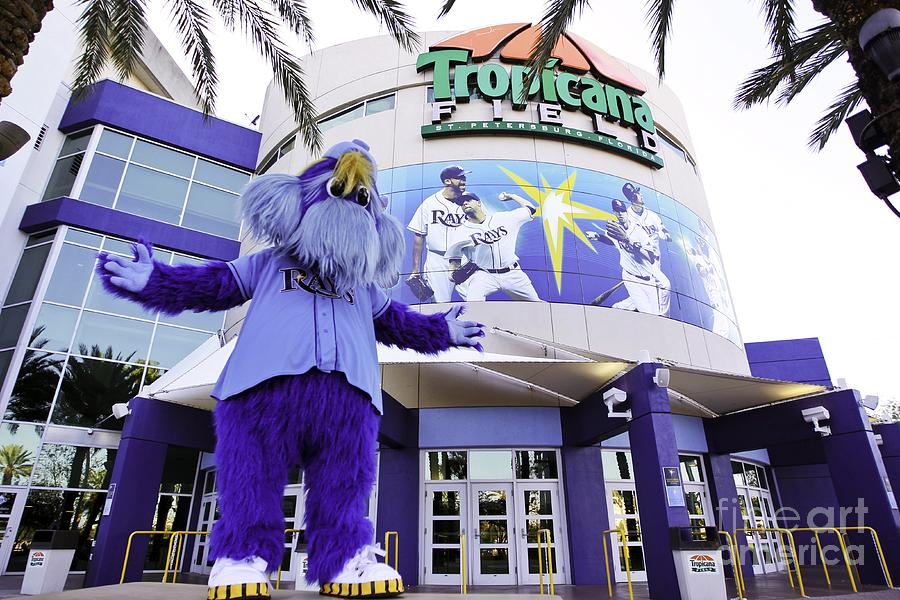Tampa Bay Rays Mascot Photograph by Mlb Photos