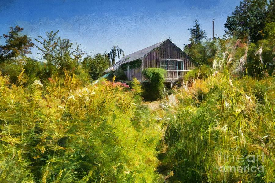 Tangled Garden by Eva Lechner