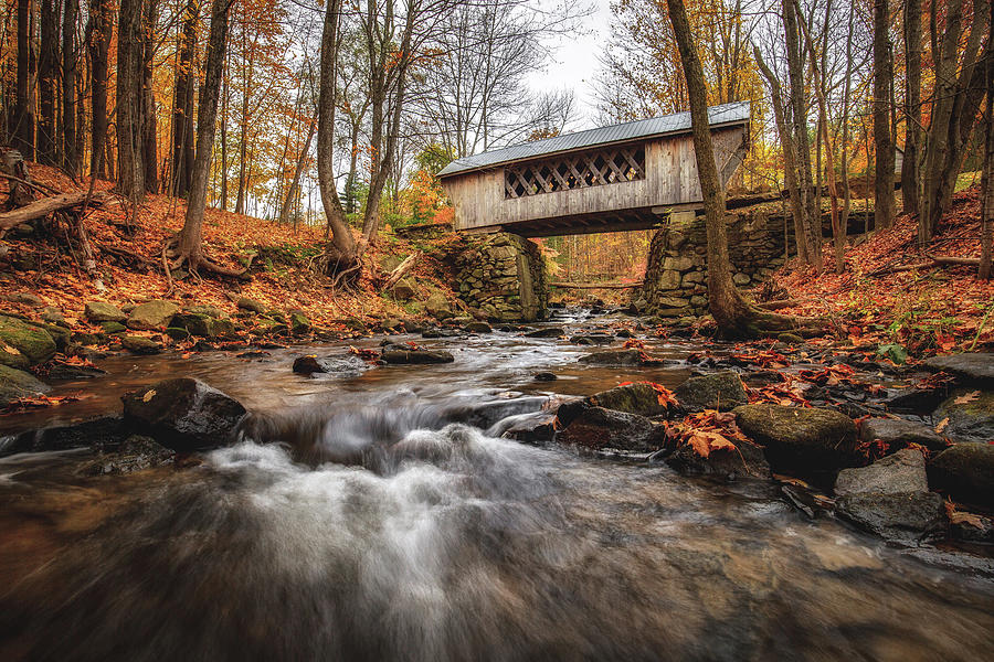 Tannery Hill Covered Bridge 2019 by Robert Clifford