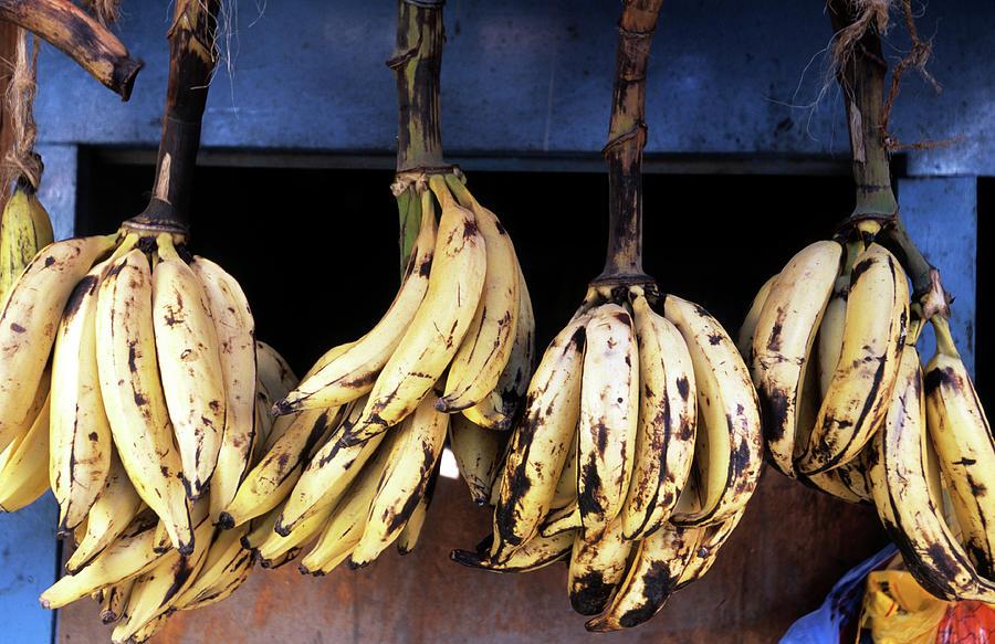 Tanzania, Zanzibar, Bananas For Sale In Photograph by John Seaton Callahan