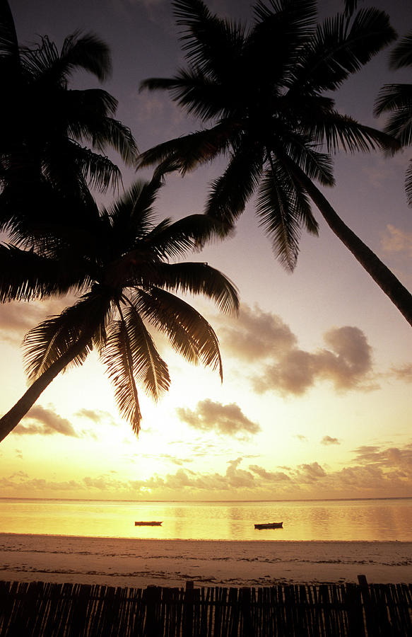 Tanzania, Zanzibar, East Coast, Beach Photograph by Tropicalpixsingapore
