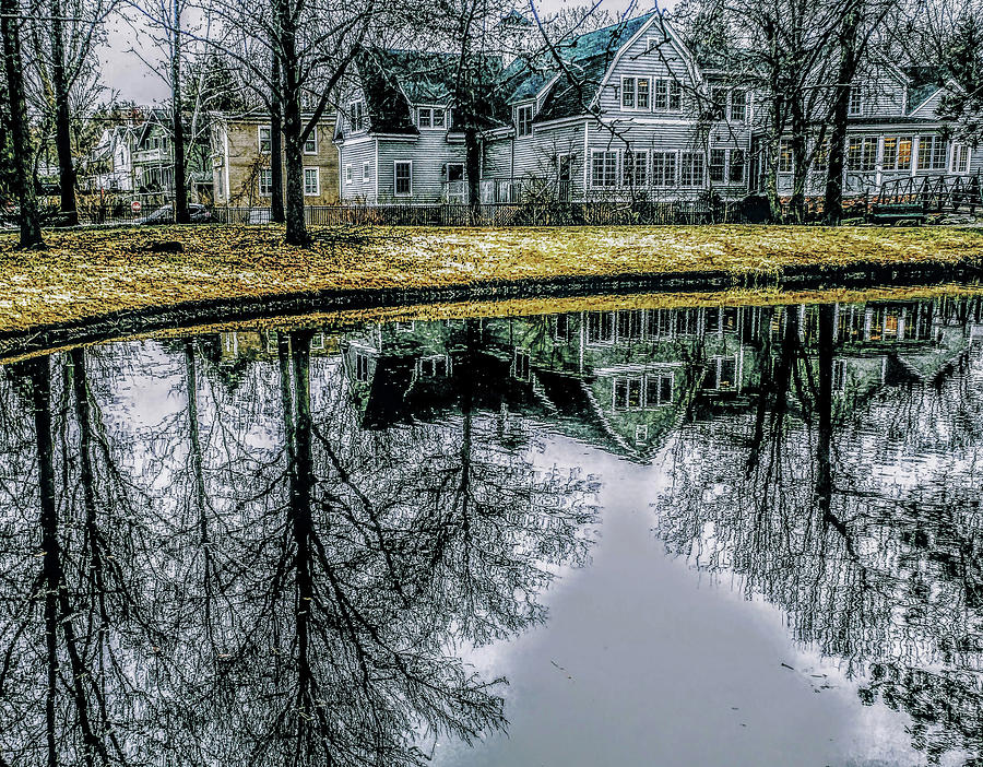 Tappan Library Reflection by Roger Bester