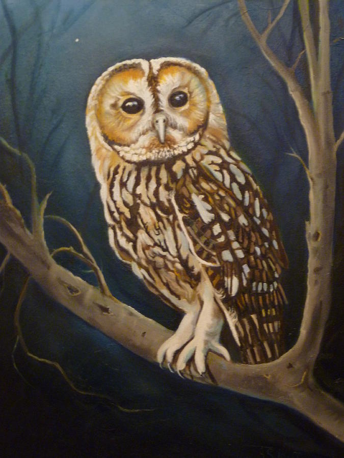 Owl Painting - Tawny Owl by Janet Silkoff