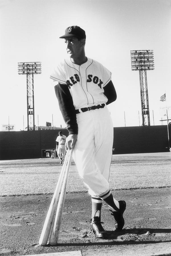Ted Williams Photograph by Slim Aarons