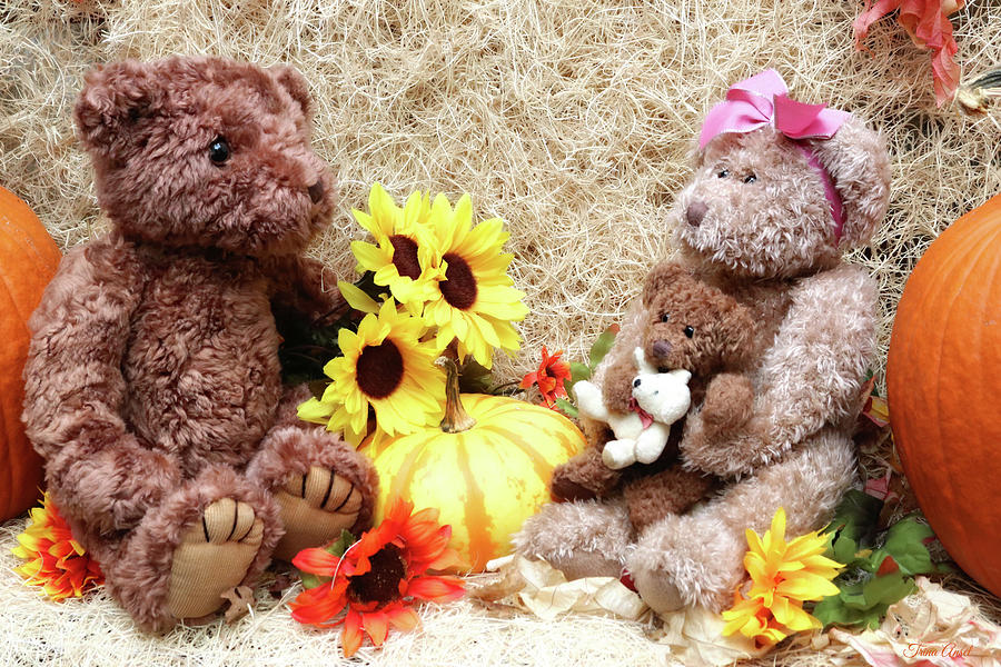 Teddy Bear Fall Family Portrait by Trina Ansel