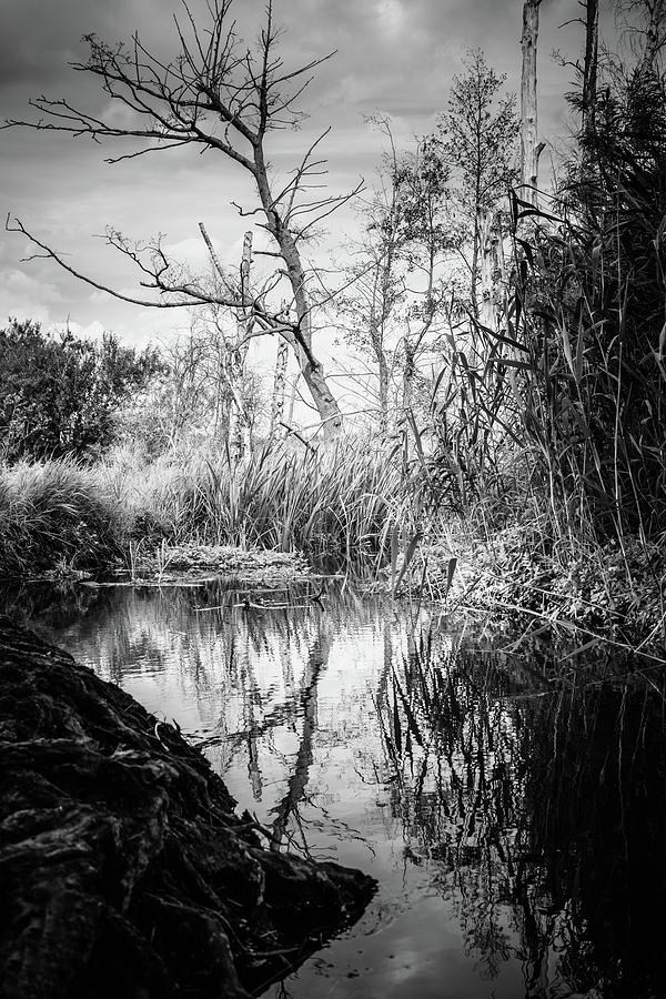 Landscape Photograph - Tegeler Fliess by Ute Herzog