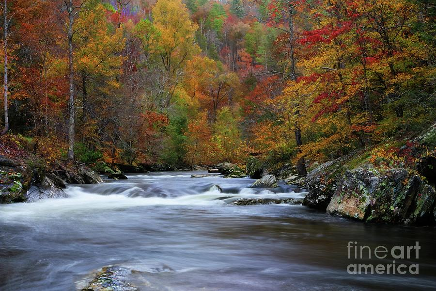 Tellico River Tennessee 3 by Rick Lipscomb