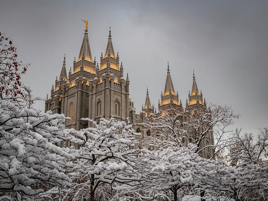 Temple in the Snow by Boyce Fitzgerald