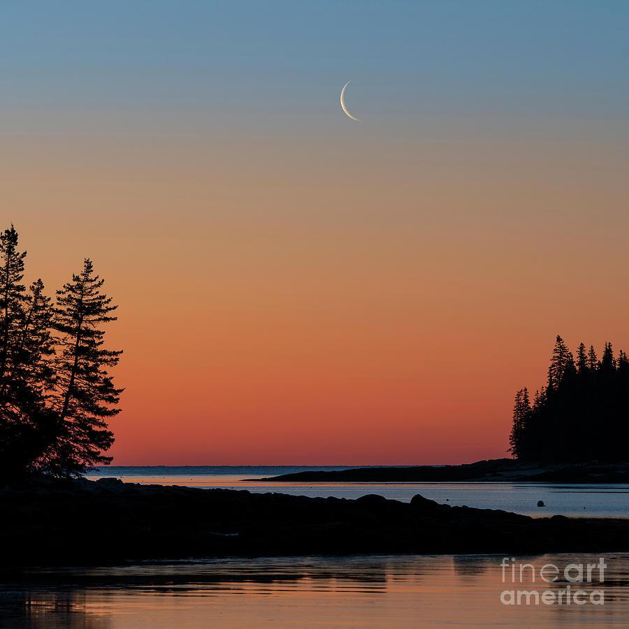 Tenants Harbor Moonrise by Craig Shaknis