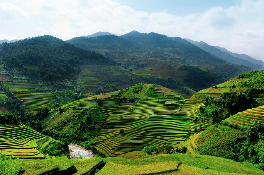 Terraced Rice Fields, Vietnam Photograph by @chinnyplus