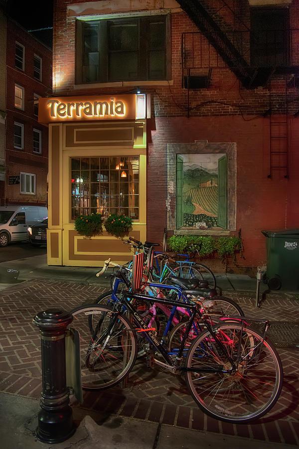 Terramia Boston by Joann Vitali