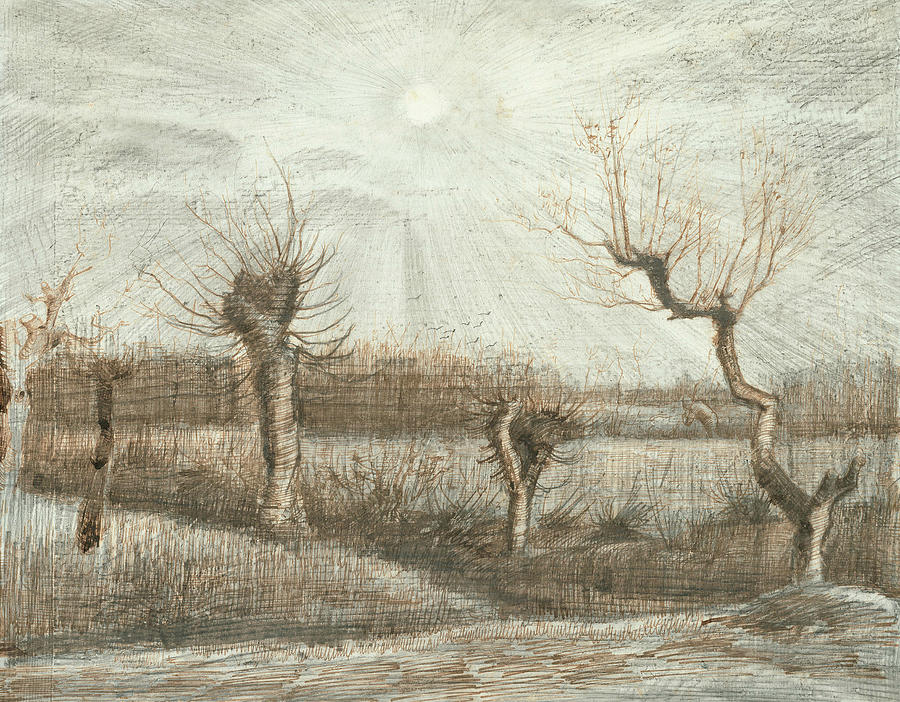 Dutch Painters Drawing - Tetards  by Vincent van Gogh