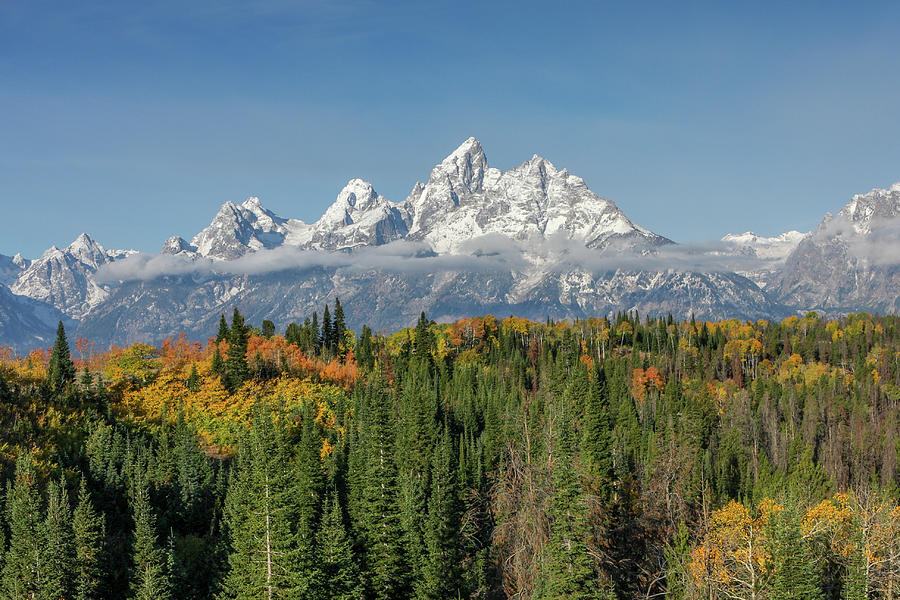 Teton in Color by Ronnie and Frances Howard