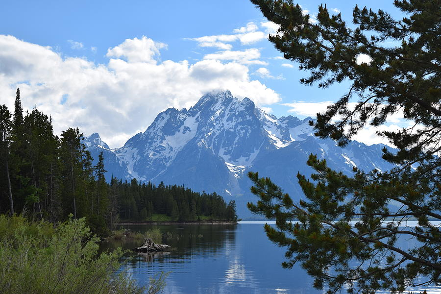 Teton Mountains Teton NP WY by Margarethe Binkley