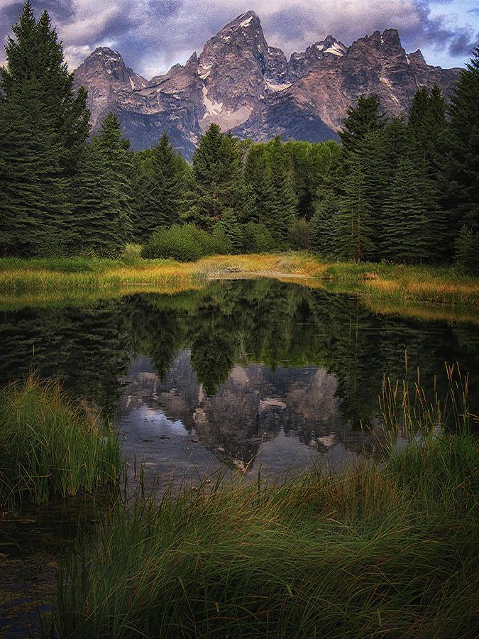 Teton Reflection by Jolynn Reed