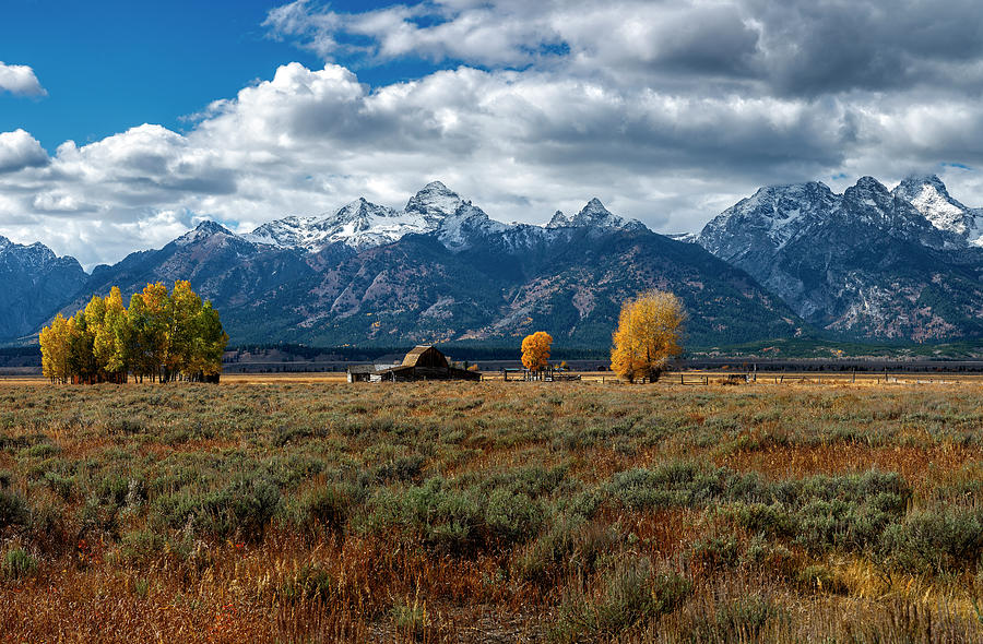 Tetons and Mormon Row by Scott Read