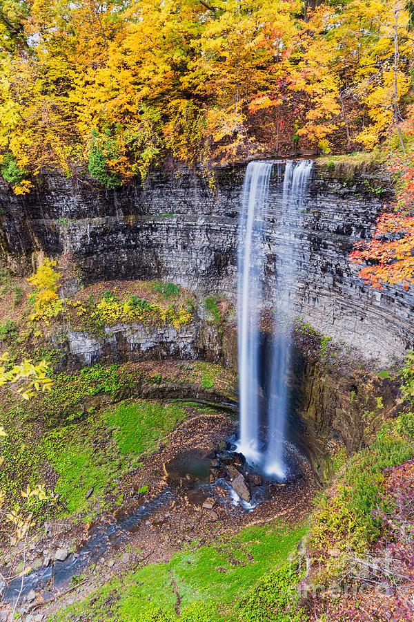 Tew's Falls by Alma Danison