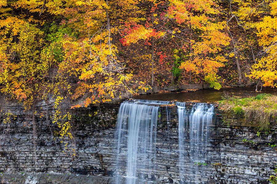 Fall at Tew's Falls by Alma Danison