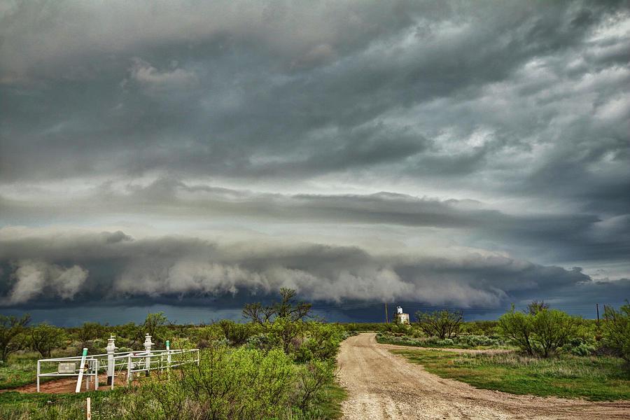 Texas Beast by Ryan Crouse