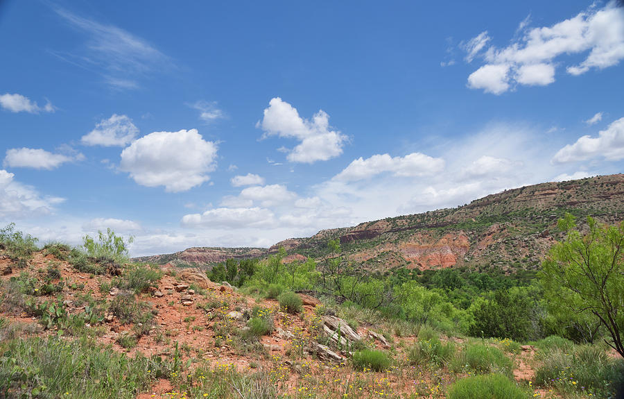 Texas Canyon 2 by Andrea Anderegg