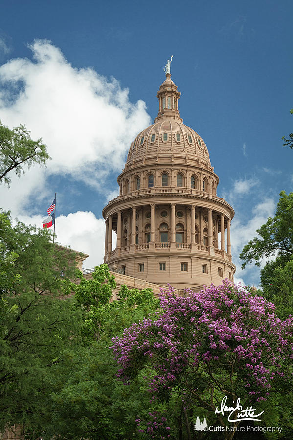 American Photograph - Texas Capital Building by David Cutts