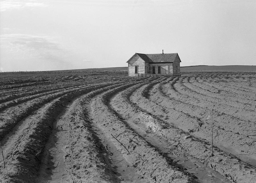 Texas: Farmhouse, 1938 by Dorothea Lange