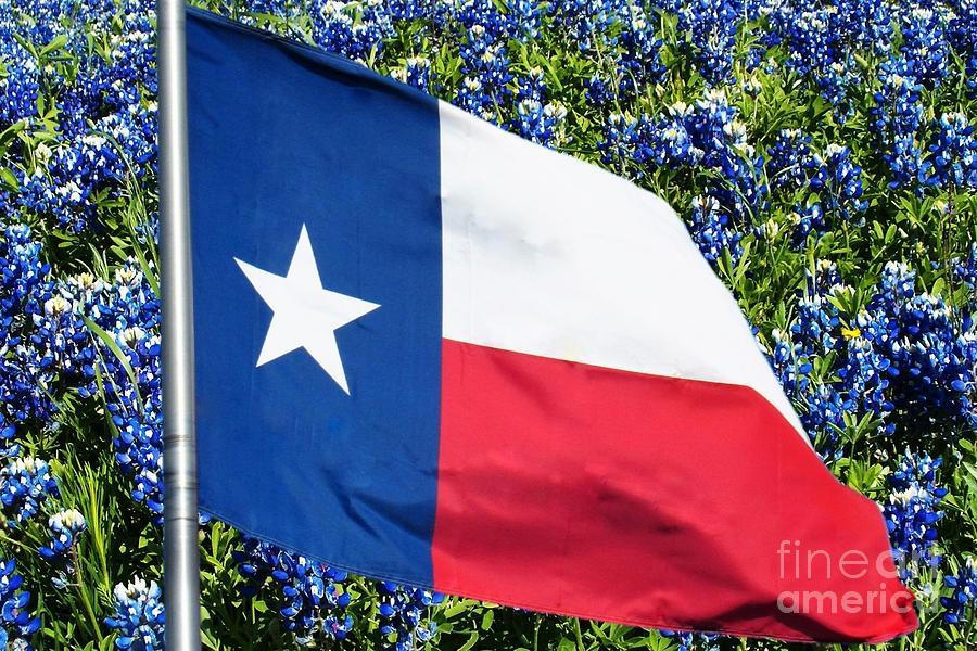 Texas Photograph - Texas Flag And Bluebonnets Version 5 by Karin Gandee