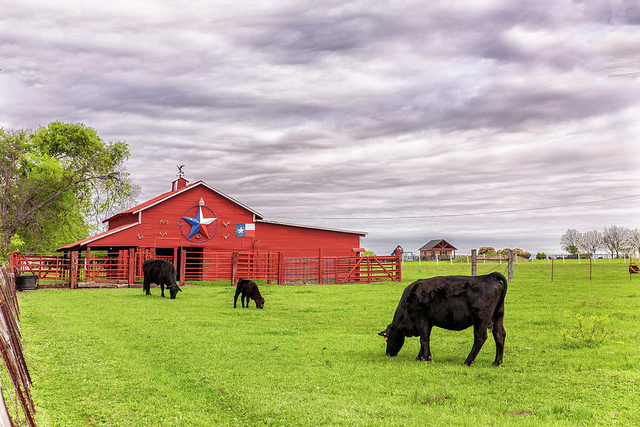 Texas Pride in Ellis County by Victor Culpepper