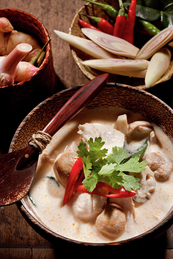 Thai Tom Kha Gai Soup Photograph by Shutterworx