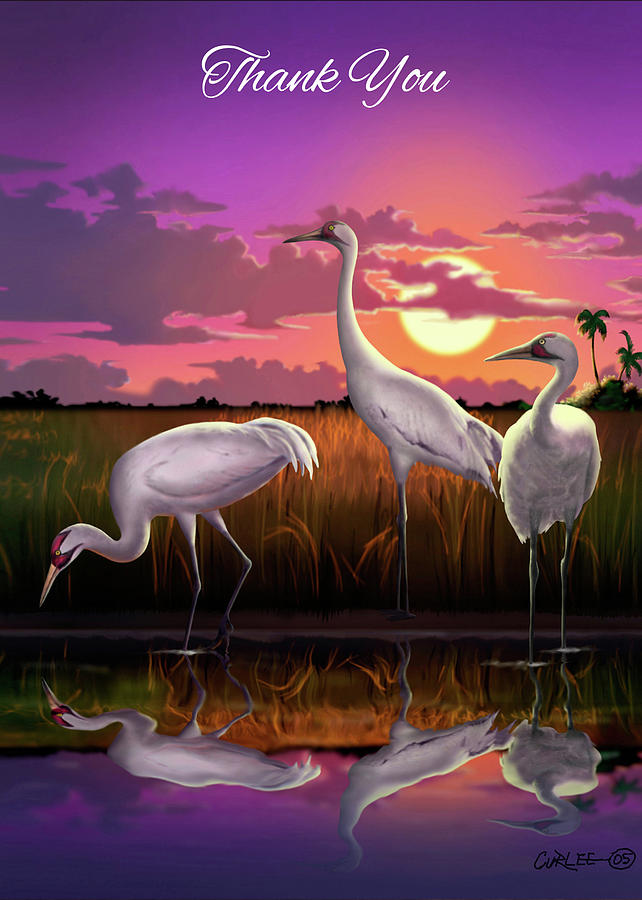 Thank You Greeting Card - Whooping Cranes Tropical Sunset Digital ...