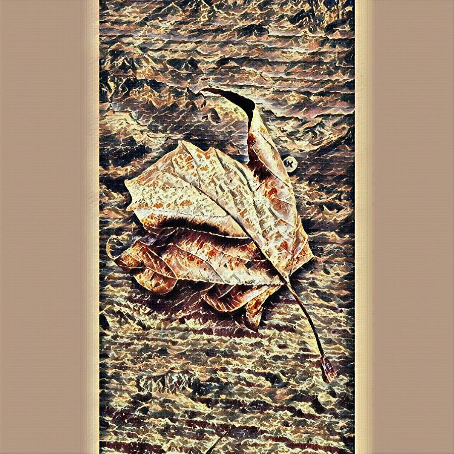 The abstract leaf by Steven Wills
