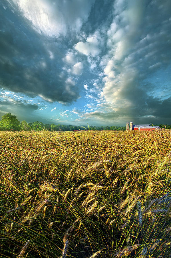 Life Photograph - The American Dream by Phil Koch