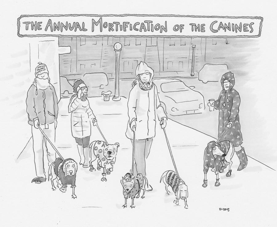 The Annual Mortification Of The Canines Drawing by Teresa Burns Parkhurst