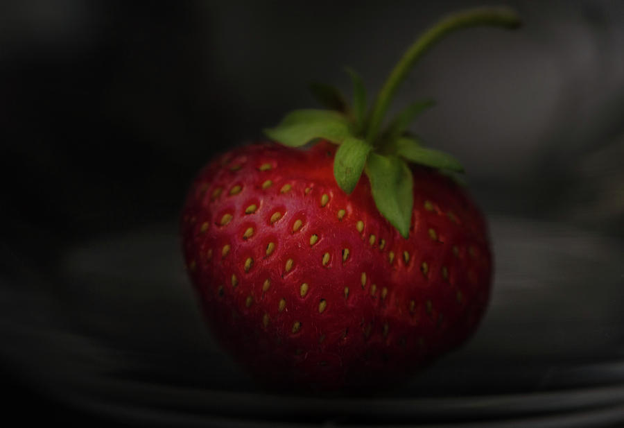 The Art of being Berry 2 by Rae Ann  M Garrett