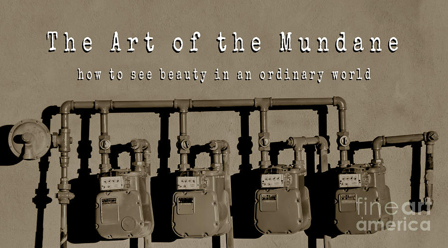 The Art of the Mundane 2 Book Cover by Tim Richards