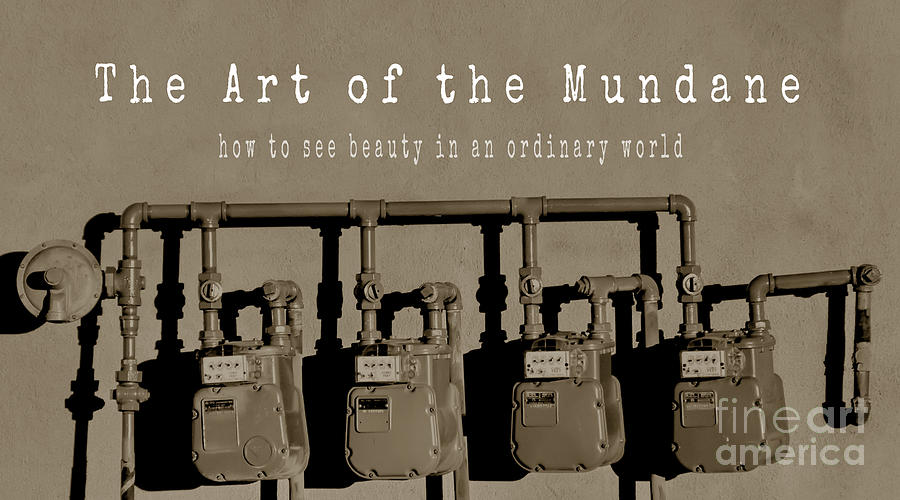 The Art of the Mundane Book Cover by Tim Richards