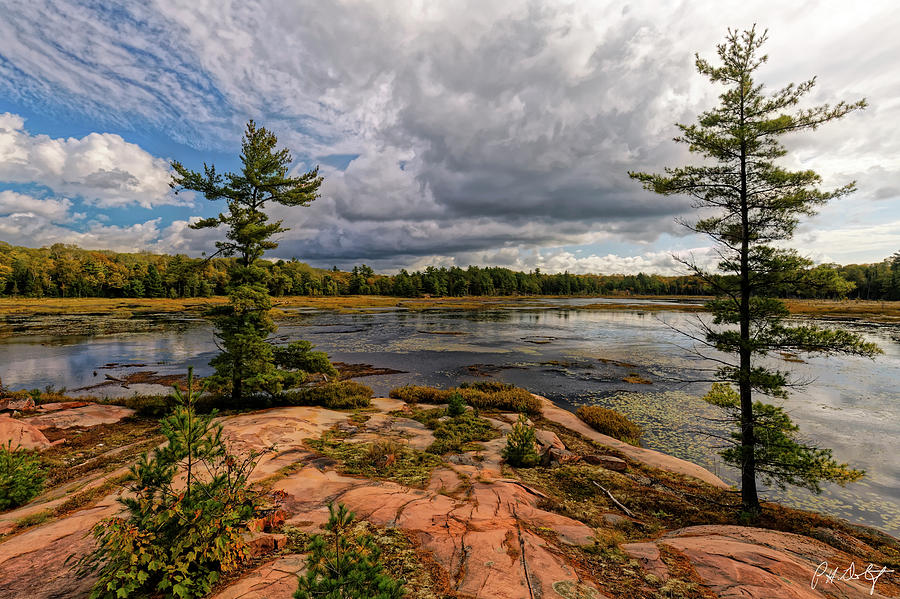 Pink Granite Digital Art - The Artistic Cranberry Bog by Phill Doherty