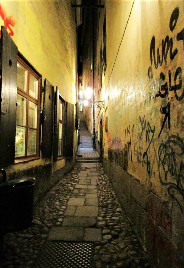 The Back Alley by Rosita Larsson