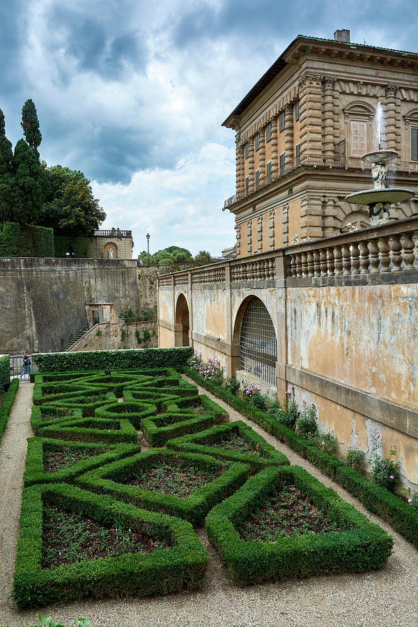 The back of the Pitti Palace by Eduardo Jose Accorinti