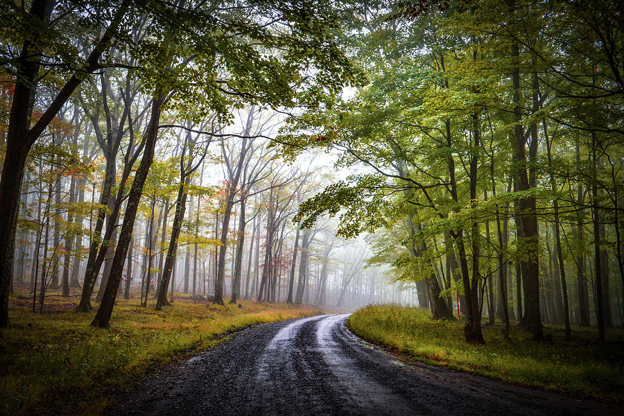 The Backroads by Lj Lambert