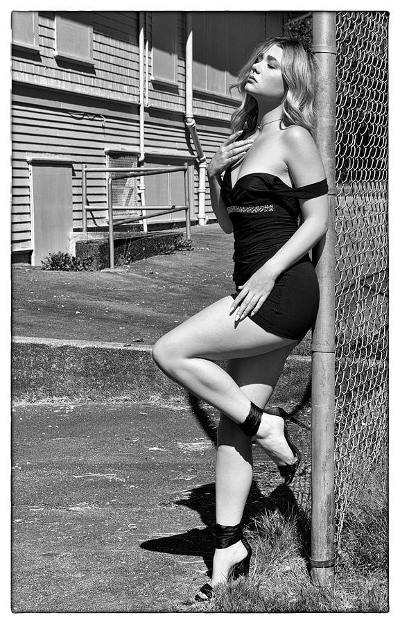 The Backyard Fence by Doug Matthews