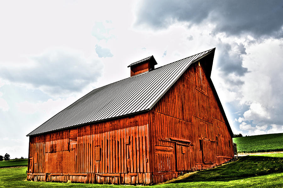 The Barn at the Arboretum by David Patterson