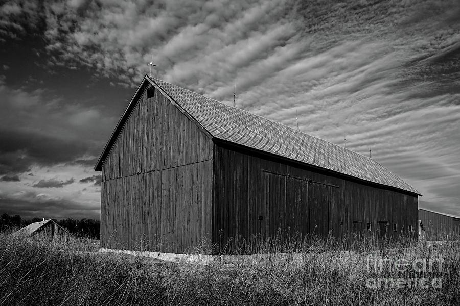 The Barn Mono by Rachel Cohen