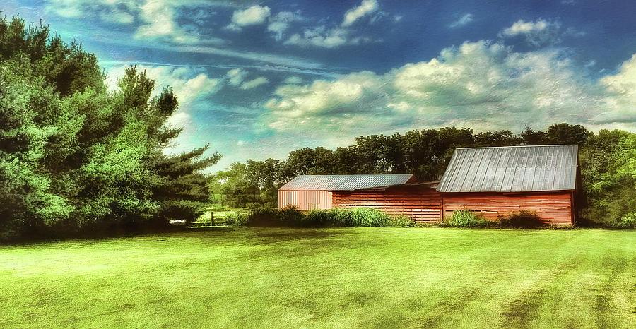 The Barn by Reynaldo Williams