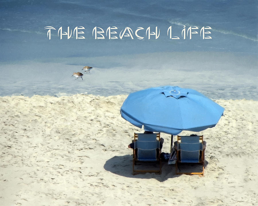 The Beach Life And Text by Sandi OReilly
