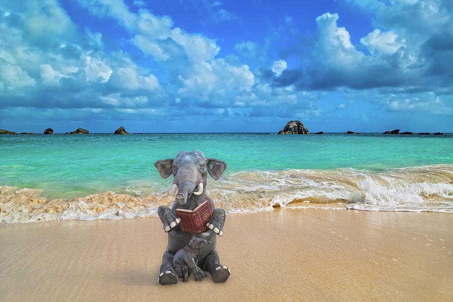 Elephant Digital Art - The Beach Story by Betsy Knapp